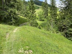 082-fussweg-hilferepass